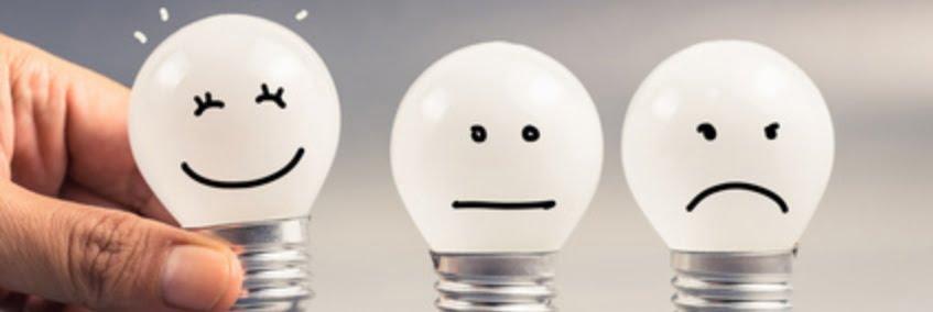 Drag'n Survey: la start-up qui permet de créer des sondages en ligne